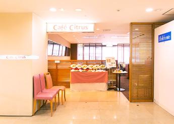 Cafe Citrus